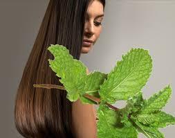 remedios caseros para el cabello graso